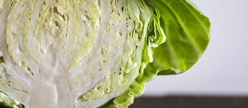 How to Dry Cabbage