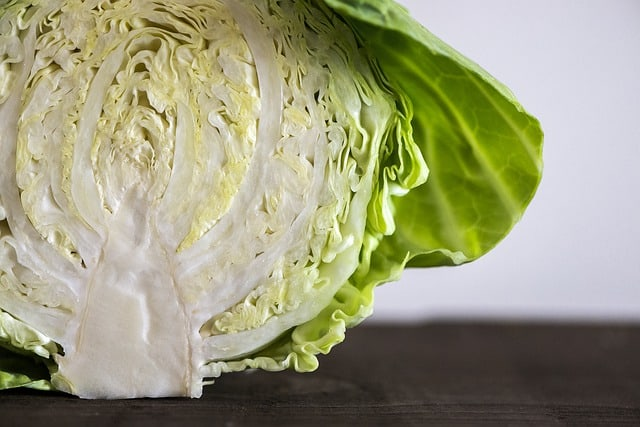 a head of cabbage ready to be dried