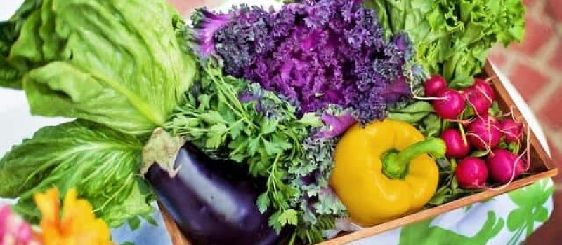 Best Vegetables to Dehydrate