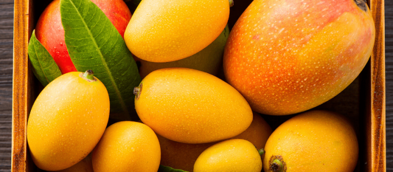 How to Store Mangoes