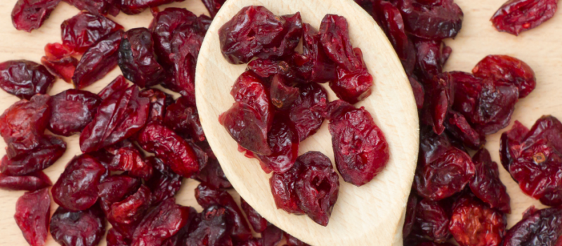 Dried Cranberry Benefits