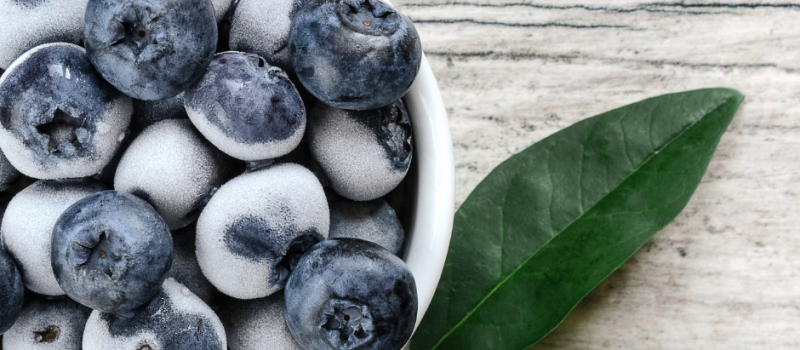 How to Dehydrate Frozen Blueberries