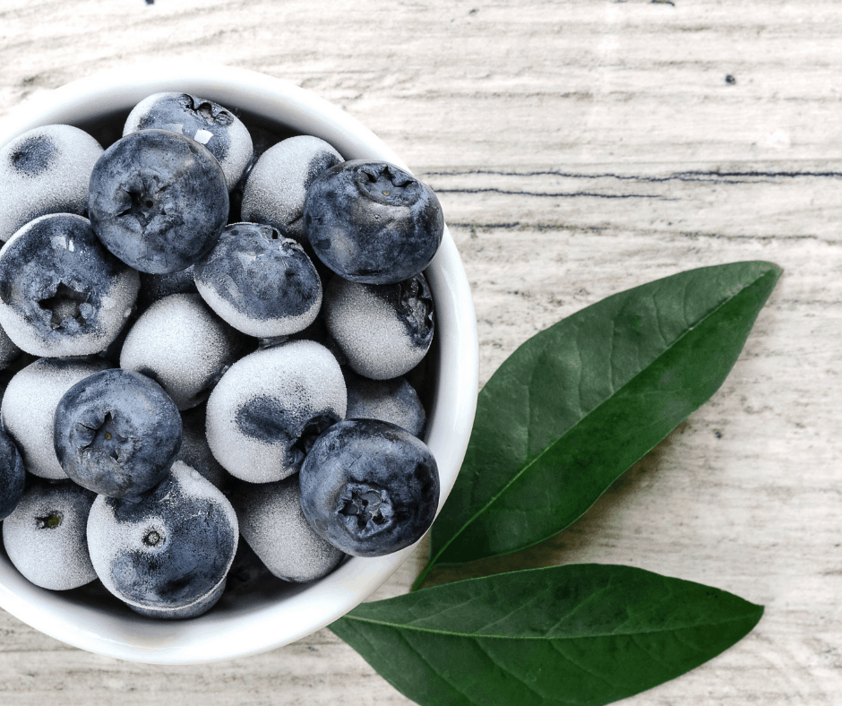 frozen blueberries ready to be dehydrated